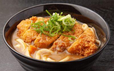 Chicken Katsu Udon Noodles